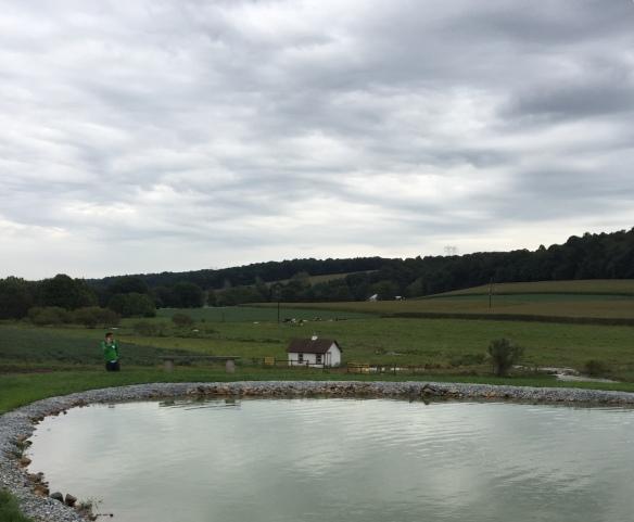 Schiffer farm