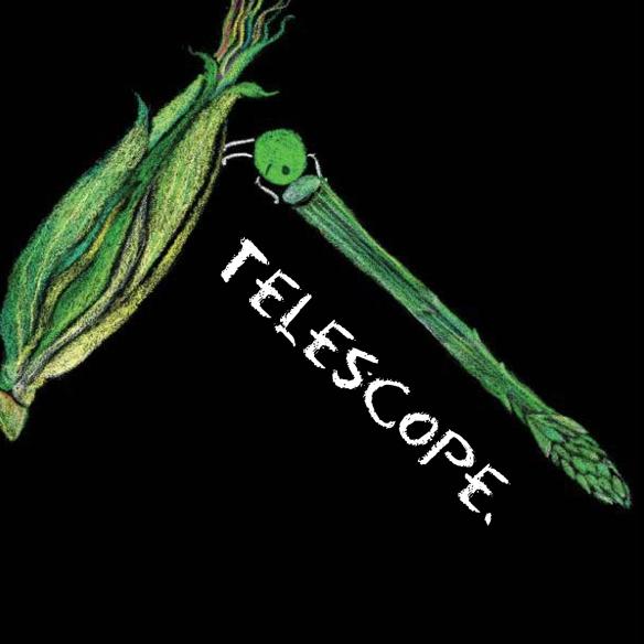 9 telescope